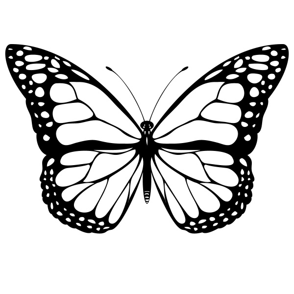 Free Butterfly Wing Outline, Download Free Clip Art, Free.