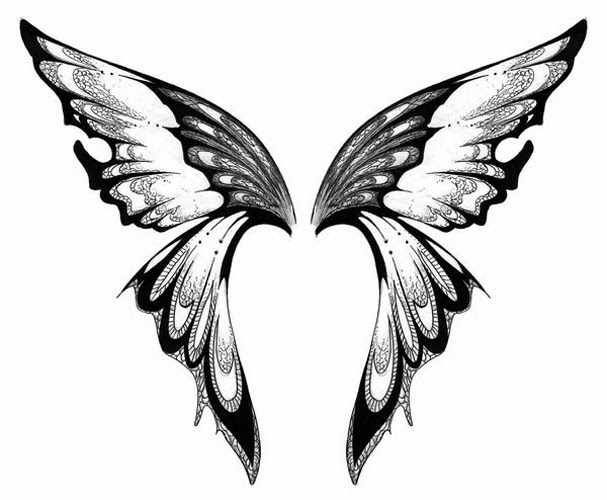 Image result for butterfly wings clipart black and white.