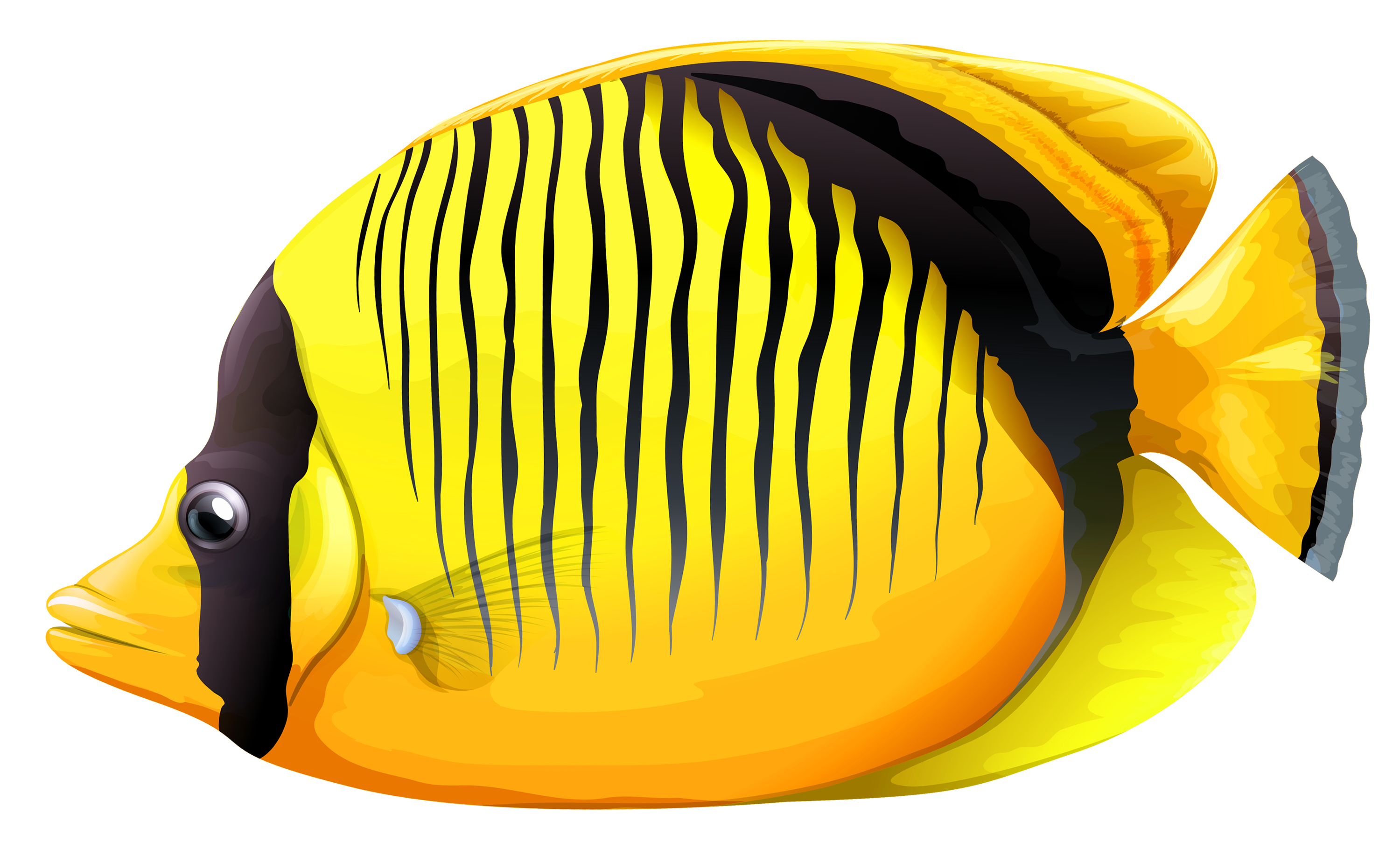 Yellow Butterfly Fish PNG Clipart.