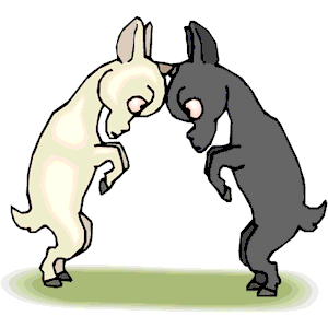 Goats Butting Heads clipart, cliparts of Goats Butting Heads free.
