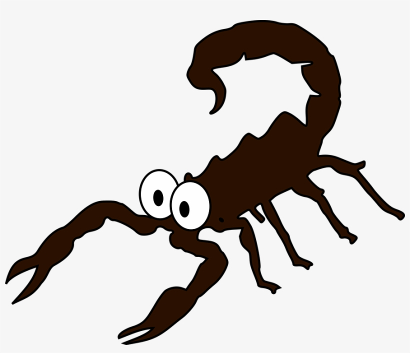 Scorpion Shop Of Clipart Library Buy.