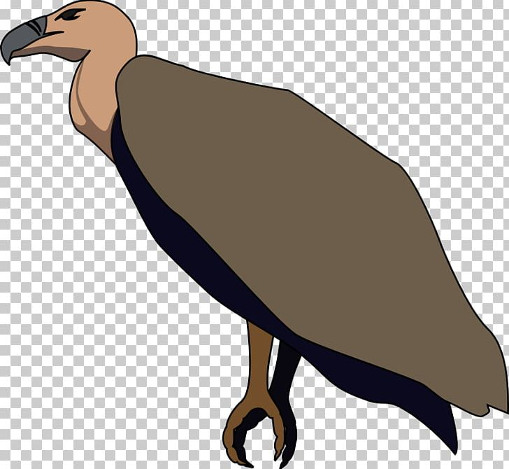 Beaky Buzzard Turkey Vulture PNG, Clipart, Beak, Beaky.