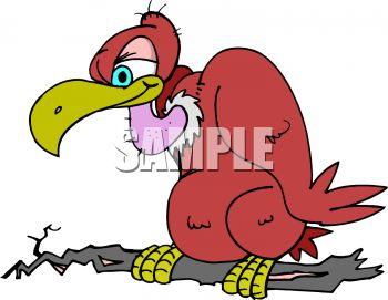 Cartoon buzzard clipart » Clipart Station.