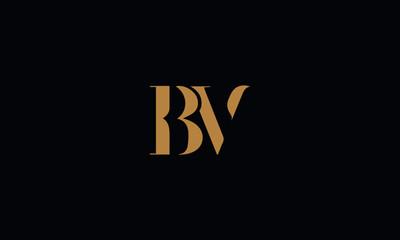 bv Logo\