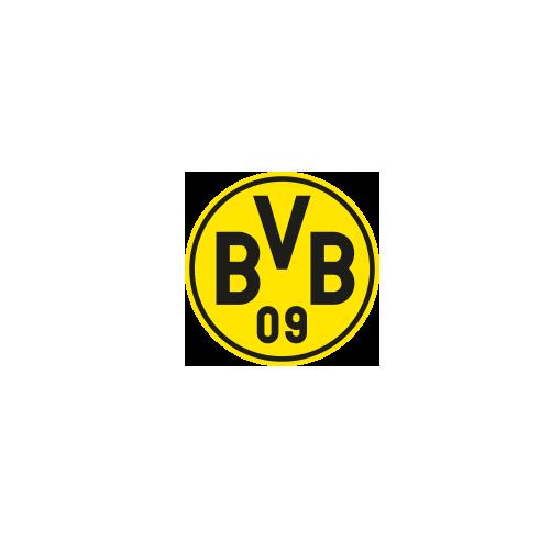 BVB Case Study.