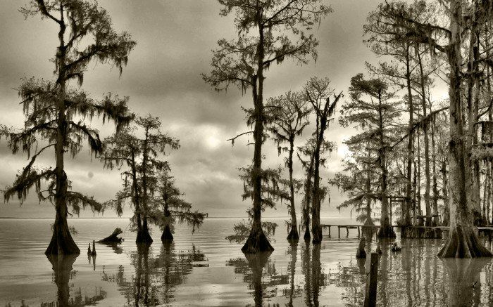 12 Amazing Photos In Louisiana You Won\'t Believe Are Real.