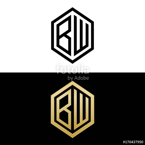 initial letters logo bw black and gold monogram hexagon.