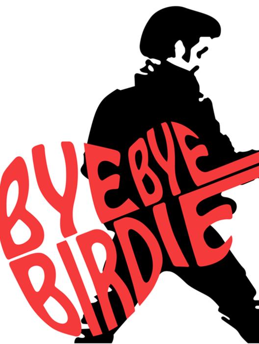 Bye Bye Birdie at Queensbury Senior High School.