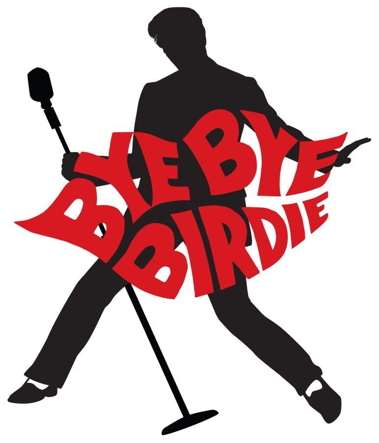 Temple Sinai Players to Perform Bye Bye Birdie.