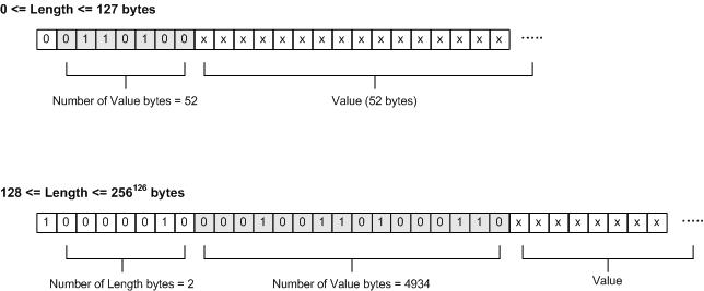 Encoded Length and Value Bytes.