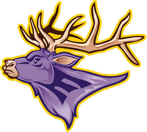 Elks falter late in loss to Mariners in boys' hoops.