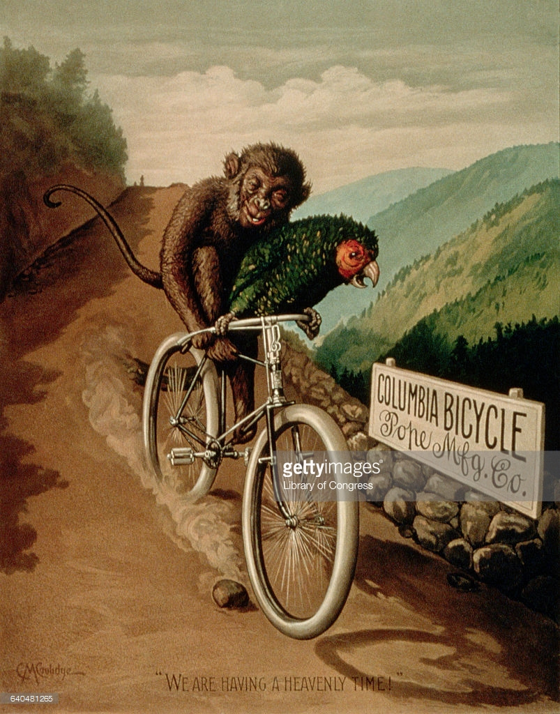 Monkey Bicycle Stock Photos and Pictures.