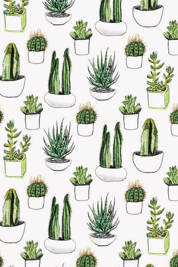 1000+ ideas about Cactus Drawing on Pinterest.