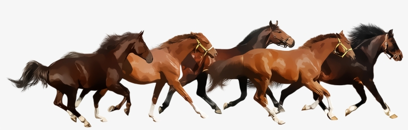 Running Horse Png.