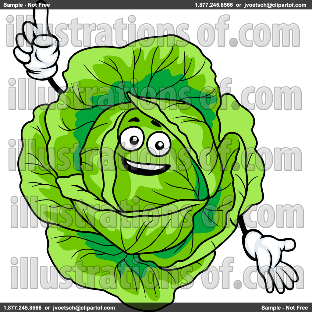 Cabbage Clipart.