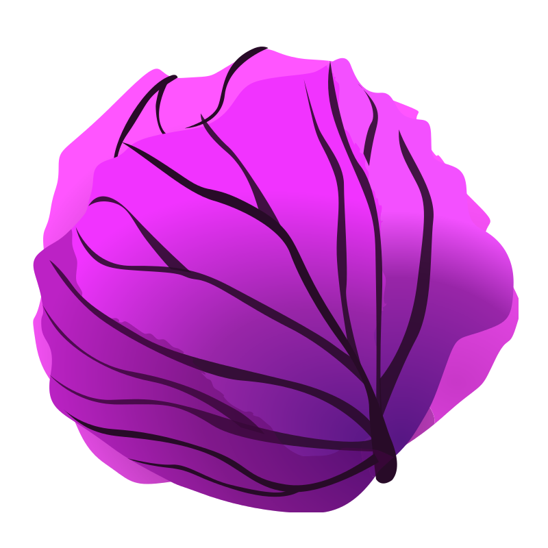 Free Clipart: Red cabbage.