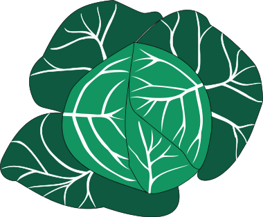 Free Cabbage Clipart, 1 page of Public Domain Clip Art.
