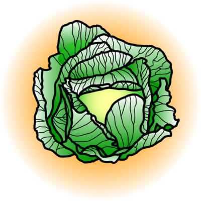Cabbage images clip art.