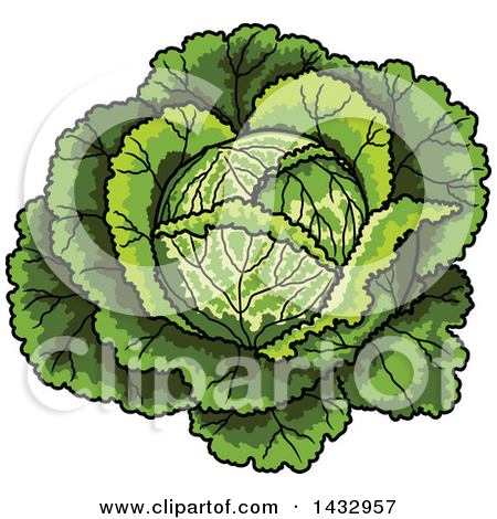 Clipart of a Cartoon Cabbage or Lettuce Head.