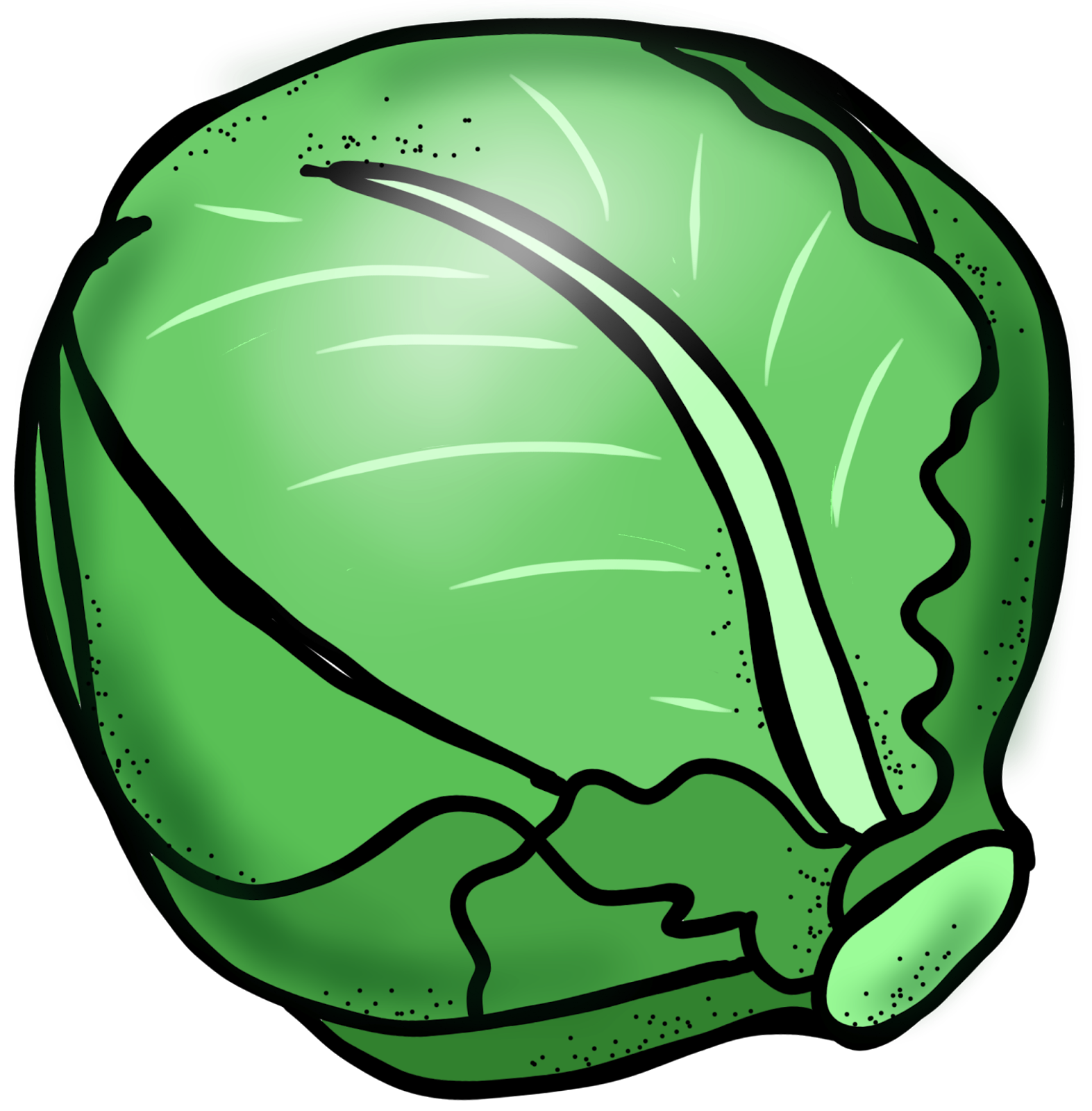 Free Cabbage Cliparts, Download Free Clip Art, Free Clip Art.