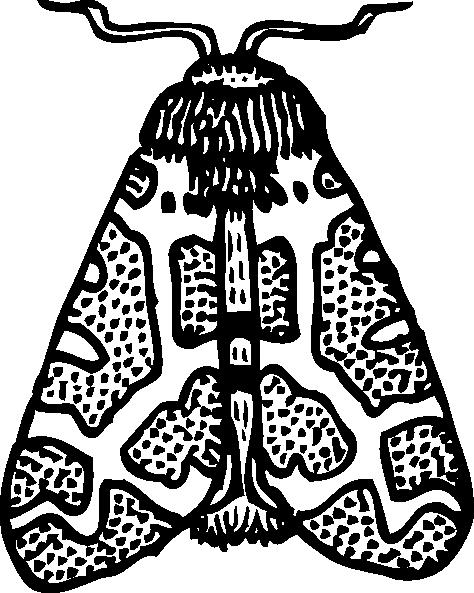 Clip Art Black And White Moth Clipart.