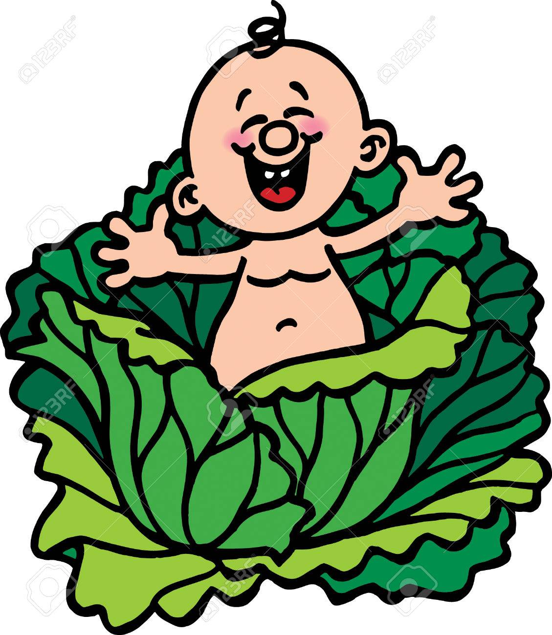 Cabbage Patch.