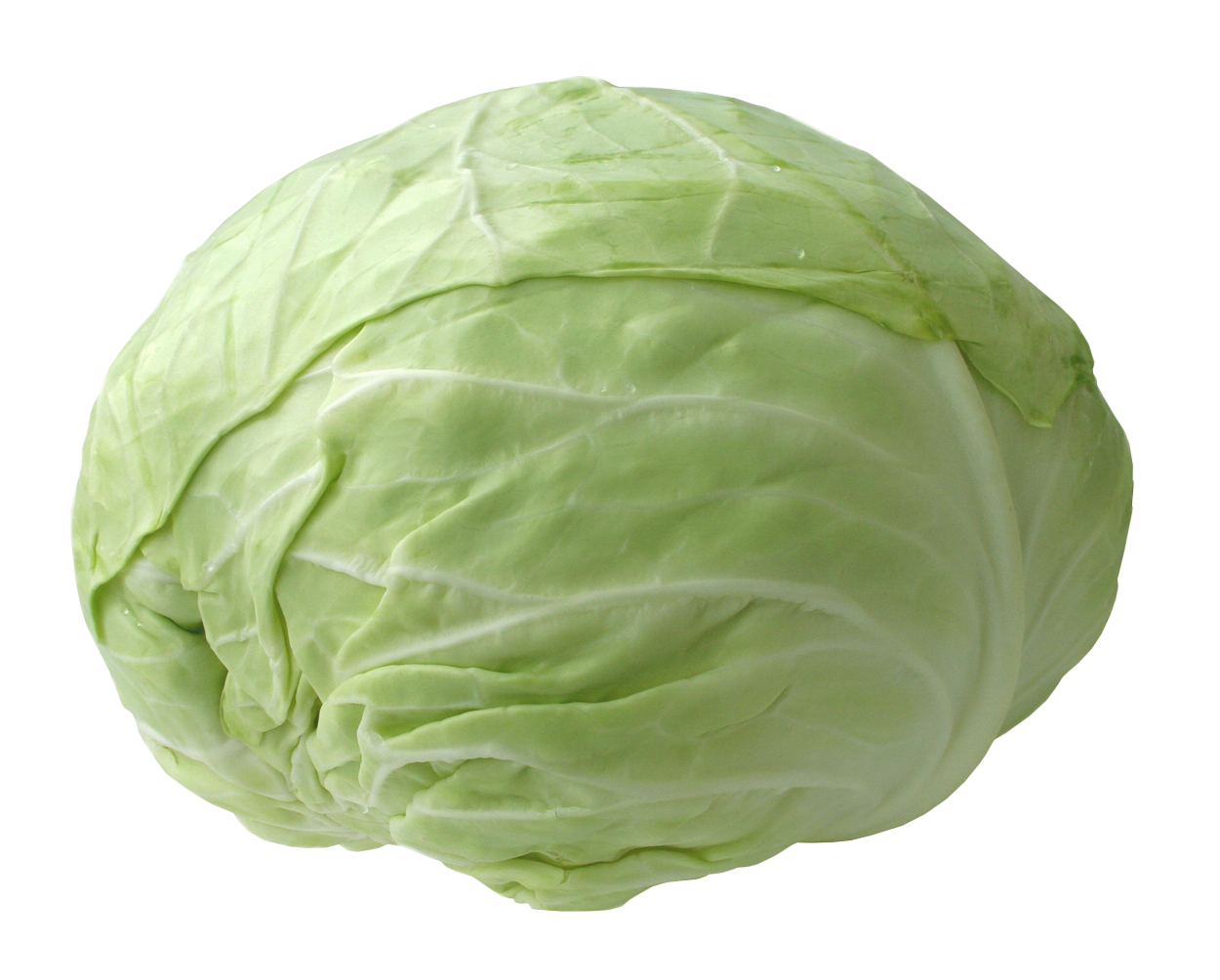 Download Cabbage PNG Picture.