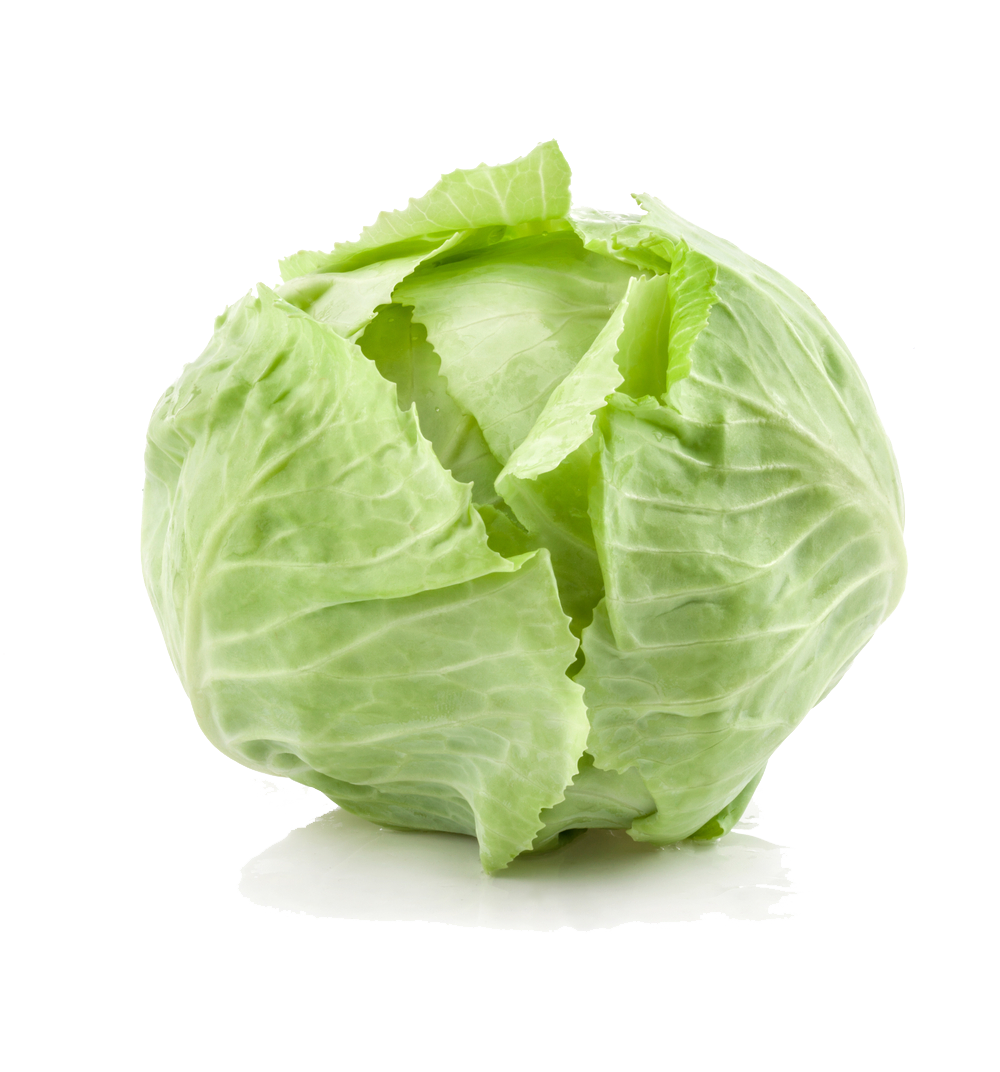 Cabbage PNG Background Image.