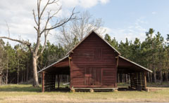Search Results for old cabins.