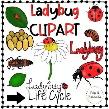 The best free Cycle clipart images. Download from 148 free.