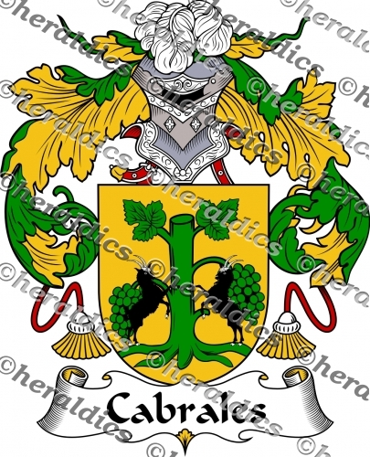 Cabrales Coat of Arms Cabrales Family Crest Instant Download.