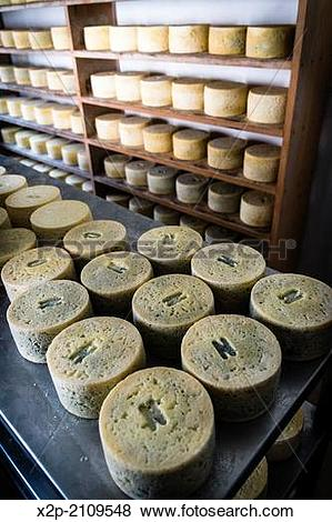 Pictures of Queser?a ?Rogelio Lopez Campo?, Cabrales cheese maker.