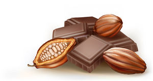 Cacao Stock Illustrations.