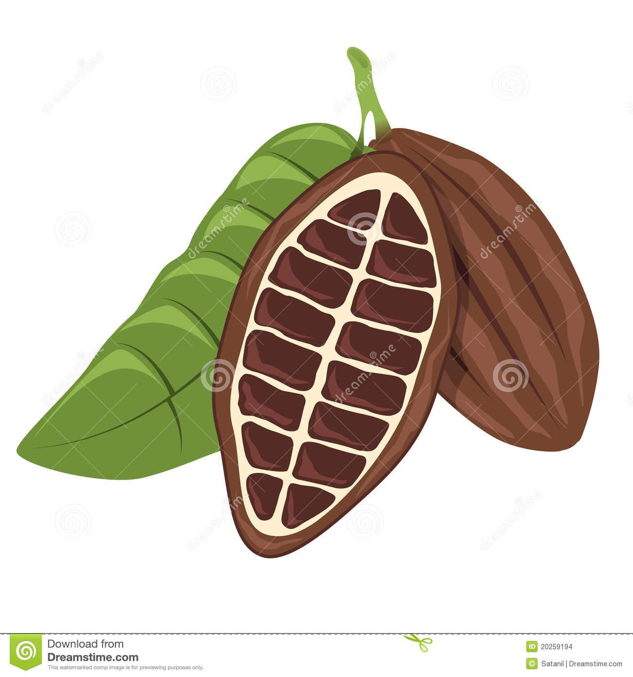 Kakao Schokolade Kakaobohne Stockfotos.