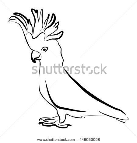 Flying Cockatoo Stock Photos, Royalty.