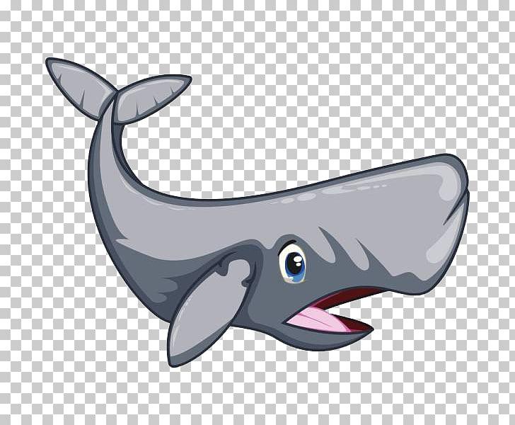 Dibujos animados de cachalote, un tiburón PNG Clipart.