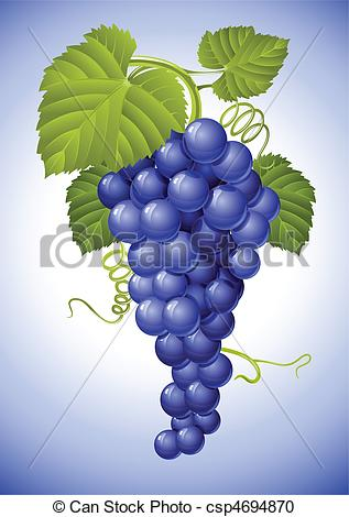 Vector Clipart of cluster of blue grape with green leaves vector.