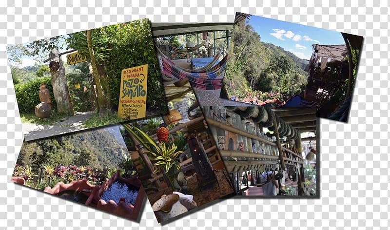 Tourism, cacique transparent background PNG clipart.