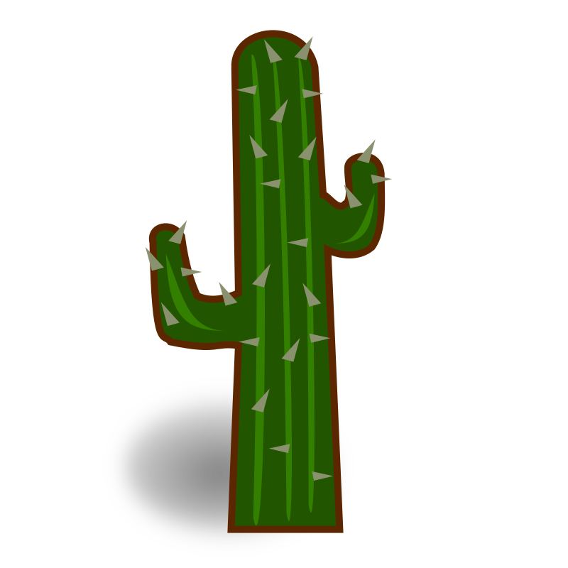 cactus definition/meaning.