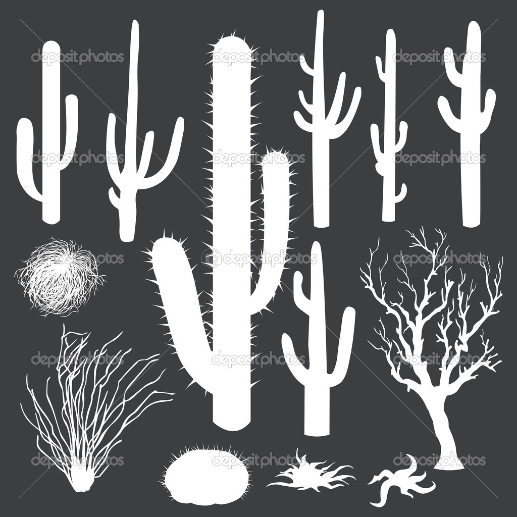 Silhouettes of cactus plants.