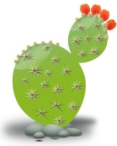 Cacti clipart #13
