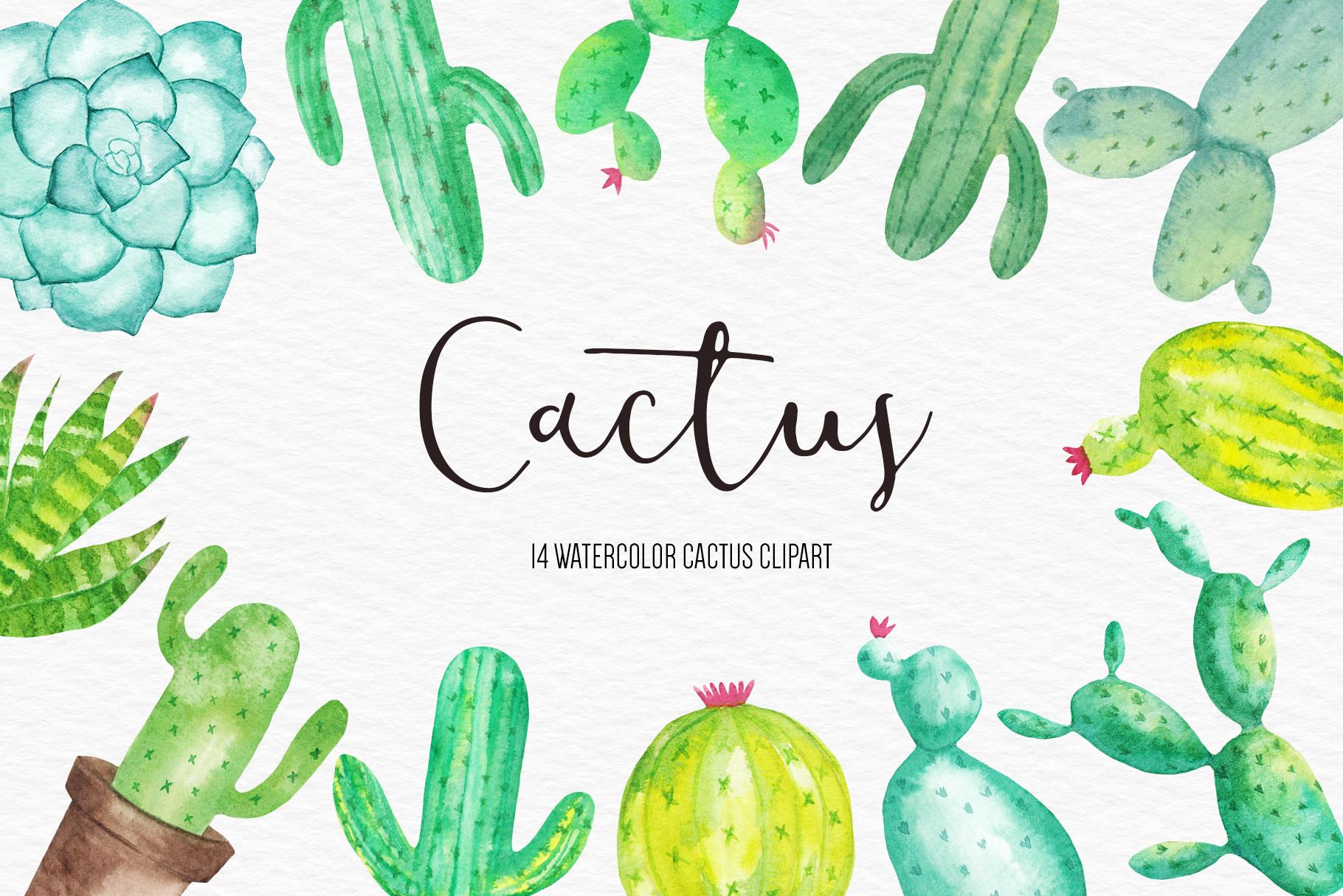 Watercolor Cactus Clipart, Cactus illustration, Succulent.