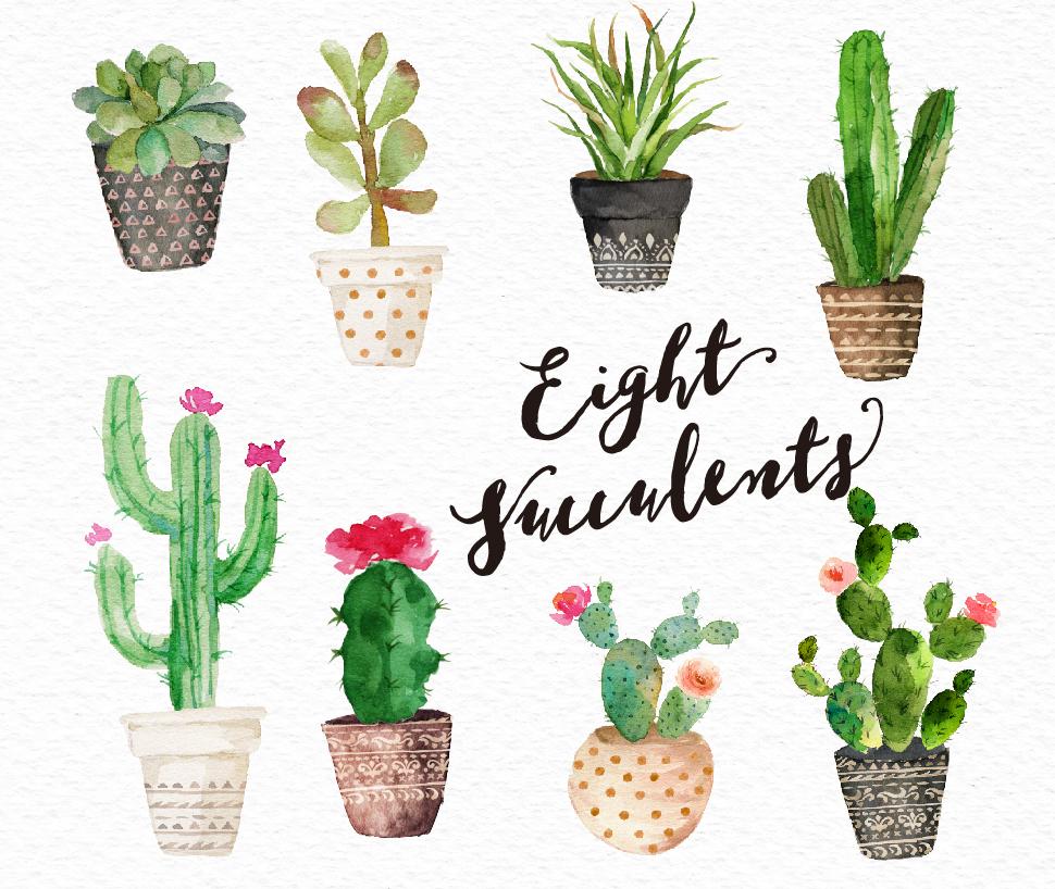 Cactus clipart succulent, Picture #144492 cactus clipart.