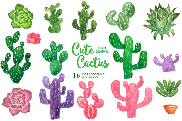 Watercolor Cactus Clipart ~ Illustrations on Creative Market.
