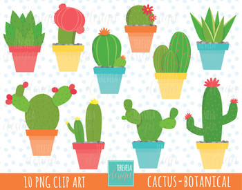 50% SALE CACTUS clipart, botanical clipart, cute graphics, cactuse.