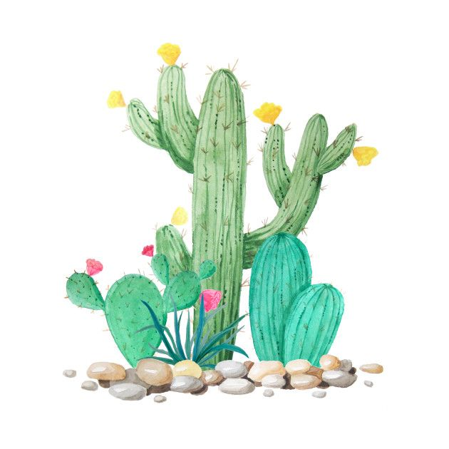 Check out this awesome \'Cactus+Watercolor+Desert+Southwest+.