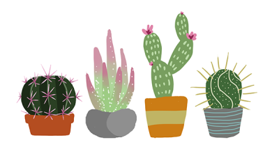 cactus drawing.