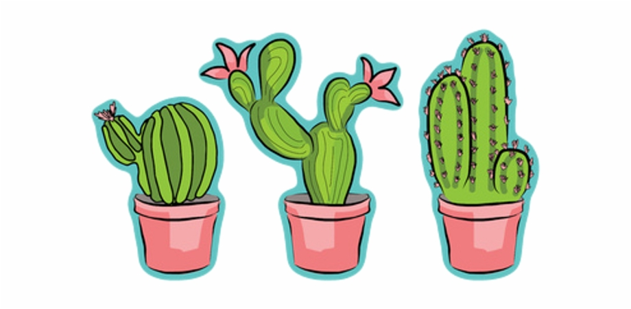 Cactus Tumblr Png Transparent Background.