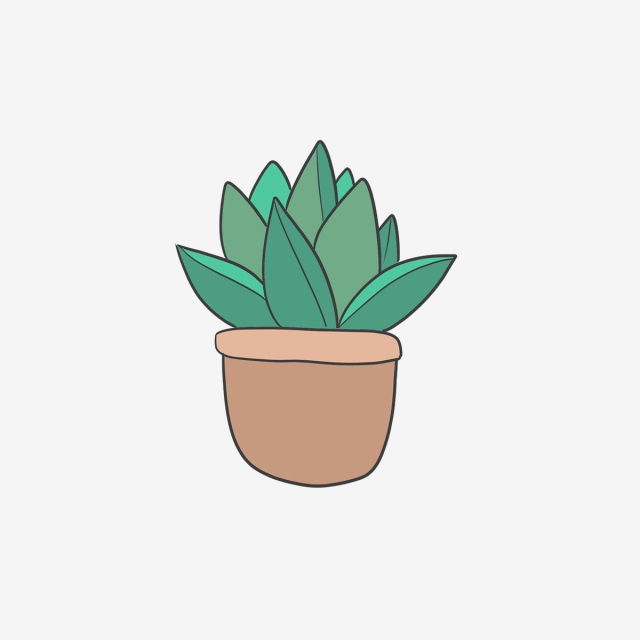 Hand Drawn Small Home Cactus, Drawing, Nature, Hand Drawn PNG.