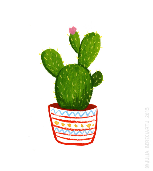 Cactus Flower Drawing.